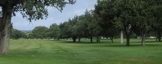 A Devine, TX golf course